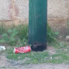 """""""Foto del giorno"""": ancora pali corrosi, un """"armadietto"""" elettrico """"inclinato"""" e una panchina abbandonata"""
