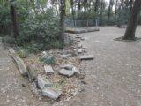 L'Amministrazione lascia il Parco Bosco comunale nell'abbandono e nel degrado