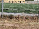 """Veleni sul campo sportivo: analisi ASL confermano presenza di pesticida """"pericoloso per l'ambiente"""". Gli amministratori hanno mentito: si dimettano!"""